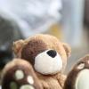 Unter anderem ein kleiner Bär
