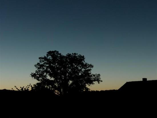 Sonnenaufgang in Techentin
